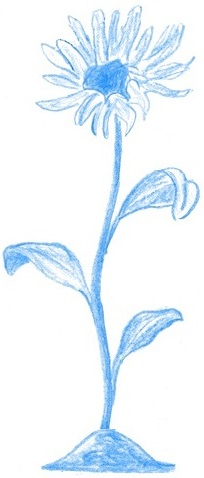Цветок-мастер