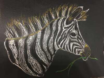 Zebra в закупках